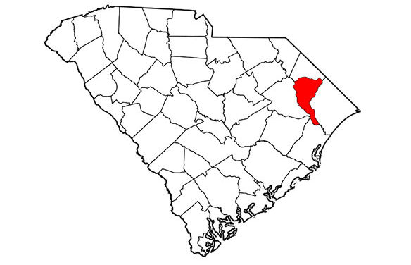 South Carolina Confirms First Equine Case of EEE of 2020