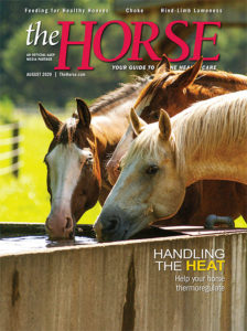 The Horse, August 2020