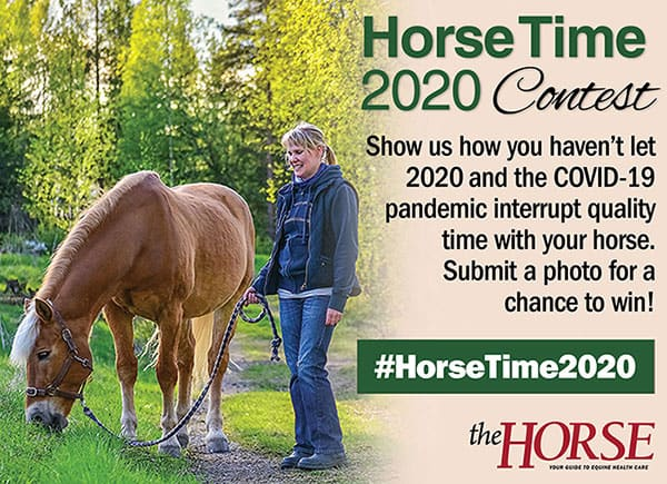 Enter The Horse's 'Horse Time 2020' Contest