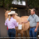 EPM Risk to Horses is Higher in Summer and Fall