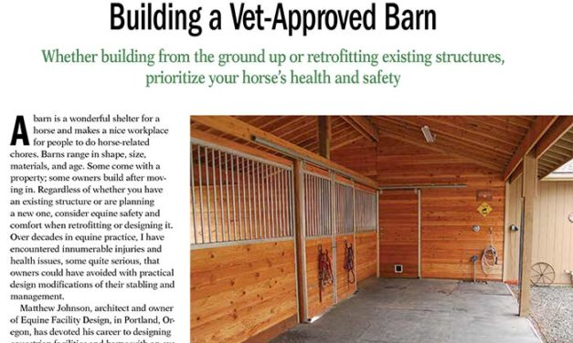 Building a Vet-Approved Horse Barn