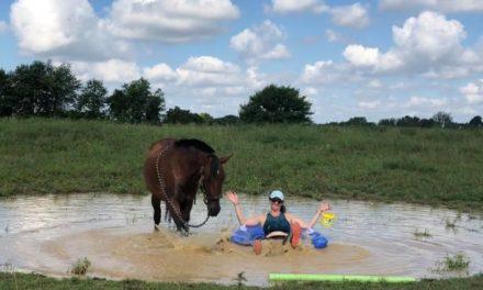 Horse Time 2020 Contest: Editors' Picks