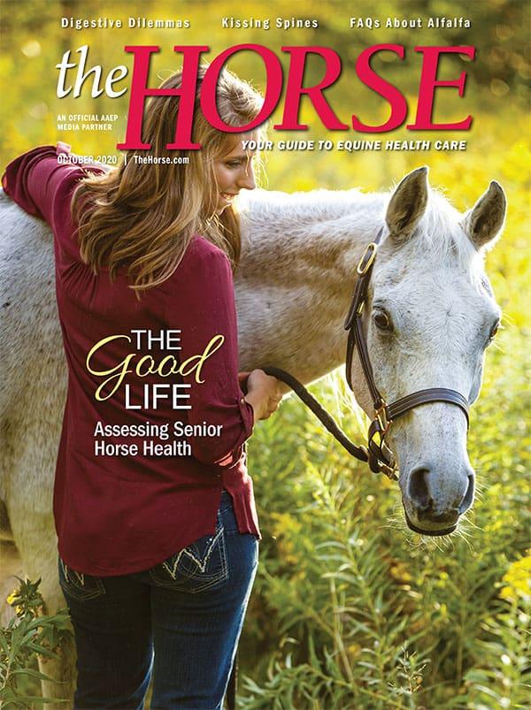 The Horse: September 2020 issue