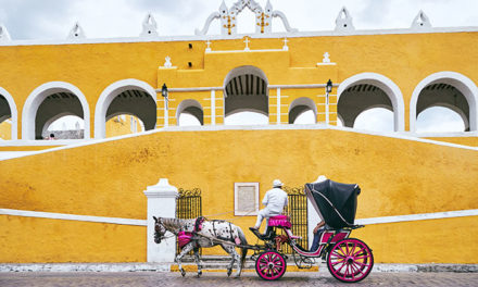 Yucatán Researcher: 'Our Carriage Horses Have Acceptable Workloads'