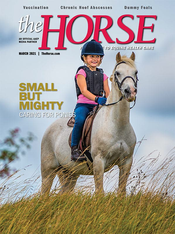 The Horse - March 2021 Issue