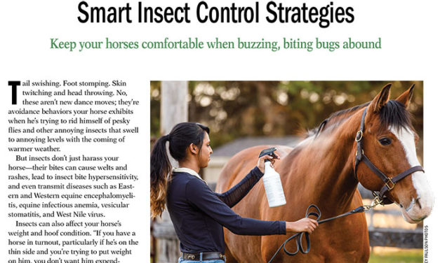 Smart Insect Control Strategies