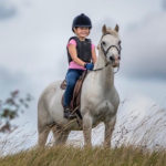 Small But Mighty: Caring for Ponies