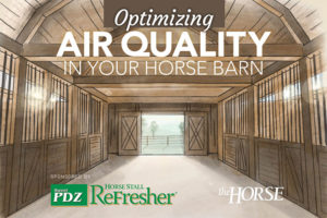 Optimizing Air Quality in your Horse Barn
