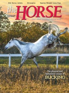 The Horse, June 2021 issue