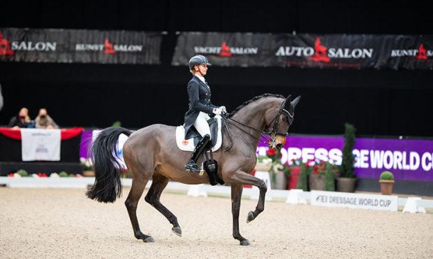 Study: Elite Dressage Horses Are 'Reasonably Comfortable'