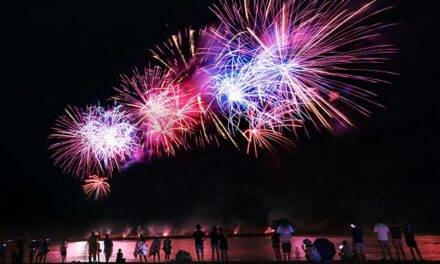 Low-Dose Detomidine Could Help Horses Stressed by Fireworks