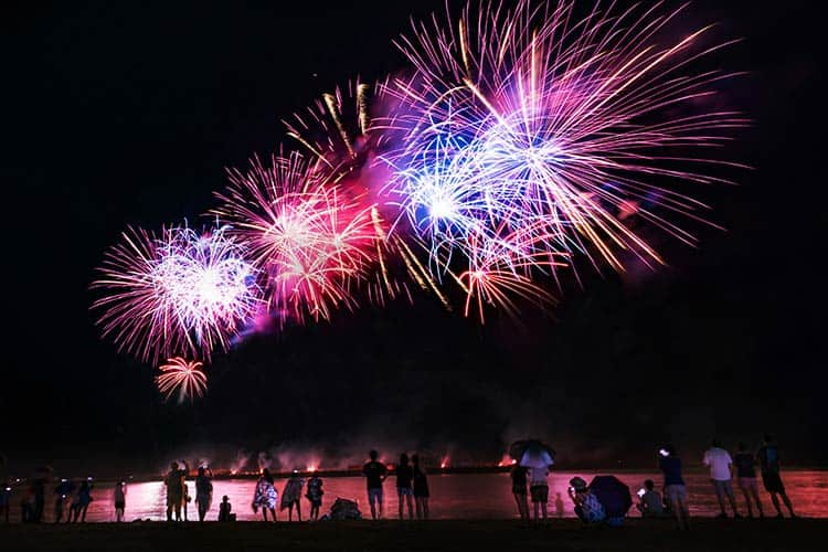 Low-Dose Detomidine Could Help Horses Stressed by Fireworks – The Horse
