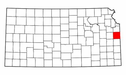Kansas Gelding Confirmed With Equine Influenza