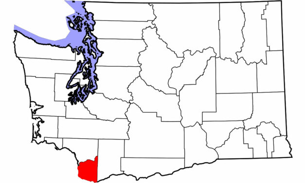 Washington State Horse Confirmed With Equine Influenza