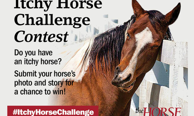 Enter <em>The Horse</em>'s 'Itchy Horse Challenge' Contest