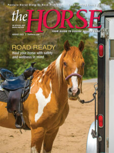 The Horse, August 2021 issue