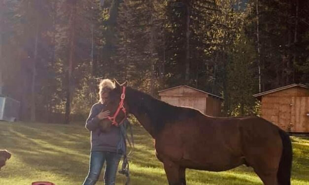 2021 'My Horse is Worth Protecting' Contest: Editor's Picks