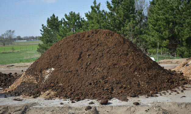 Composting Is a Viable Method of Equine Carcass Management