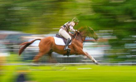 Understanding Sudden Death in Horses