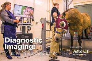 Diagnostic Imaging Options