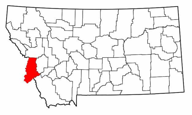Rabies Confirmed in Montana Horse