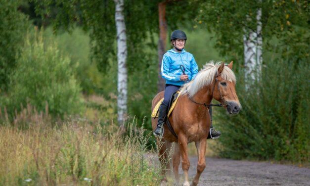 Feeding Recreational Horses
